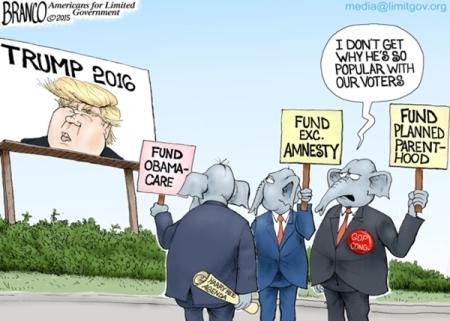 Trump-Pheno-600-nrd
