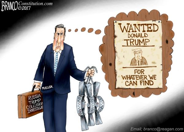Mueller-Traps-600-LA