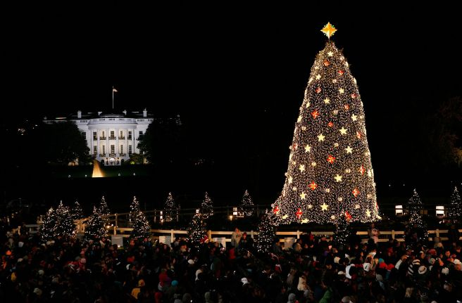 National-Christmas-Tree-56a2375a5f9b58b7d0c7fbf1