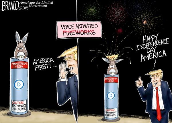 lib-fireworks-dt-600