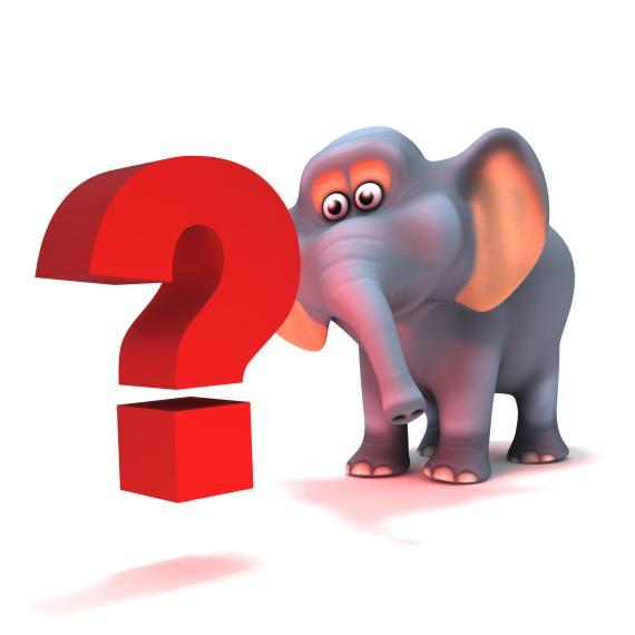 Elephant question